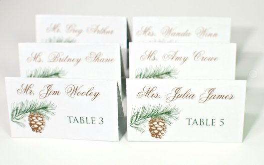 Winter Evergreen and Pine Cone Place Cards - Escort Seating Cards