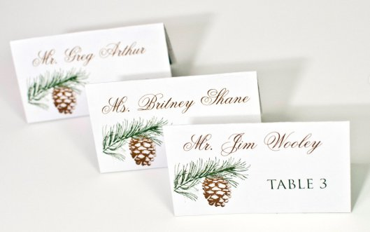 Evergreen and Pine Cone Place Cards